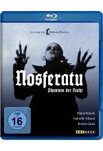 Nosferatu - Phantom der Nacht