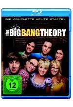 The Big Bang Theory - Staffel 8 [2 BRs]