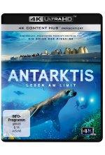 Antarktis - Leben am Limit (4K Ultra HD)