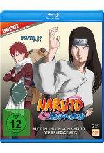 Naruto Shippuden - Auf den Spuren von Narujo - Der bisherige Weg - Staffel 19.1: Folgen 614-623 - Uncut [2 BRs]