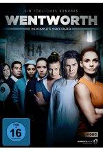 Wentworth - Staffel 4 - Ein tödliches Bündnis [4 DVDs]