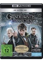 Phantastische Tierwesen - Grindelwalds Verbrechen (4K Ultra HD)