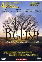 Big Fish DVD-Cover