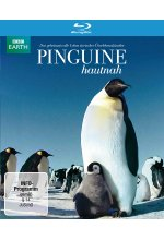 Pinguine Hautnah Blu-ray-Cover