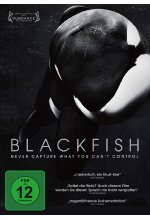Blackfish - Never cature what you can't control  (OmU) DVD-Cover