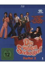 Die wilden Siebziger! - Staffel 3  [2 BRs] Blu-ray-Cover
