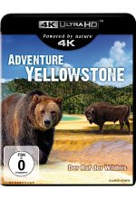 Adventure Yellowstone  (4K Ultra HD) Cover
