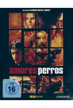 Amores Perros / Special Edition Blu-ray-Cover
