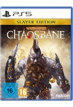 Warhammer Chaosbane (Slayer Edition) Cover